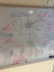 What thinking looks like. The Food and Environment group brainstormed questions to help them narrow down their research.